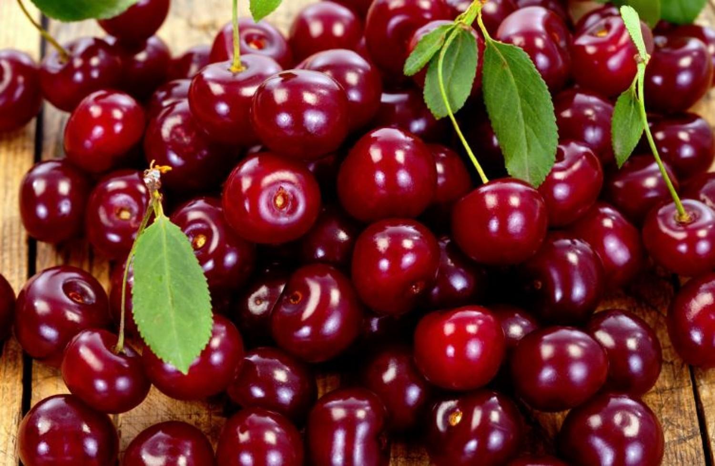 Szuper ötlet cseresznye vagy meggy magvaláshoz (videó)