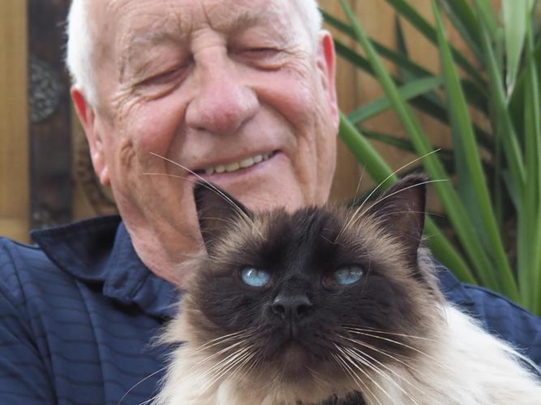 Meglepő tények: így hatnak a macskák az idős emberekre