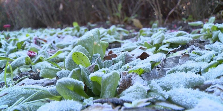 Jön a hideg! Ekkor ér el bennünket a sarkvidéki eredetű hideghullám.