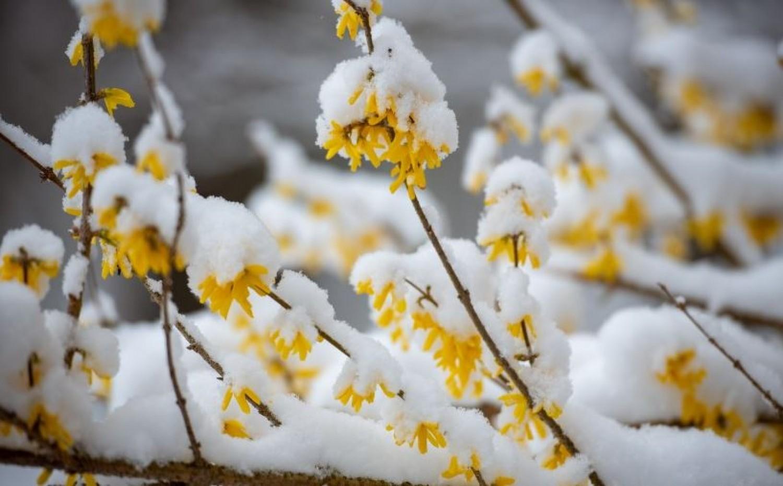 Hiába áprilist írunk: több centi hóra lehet számítani!
